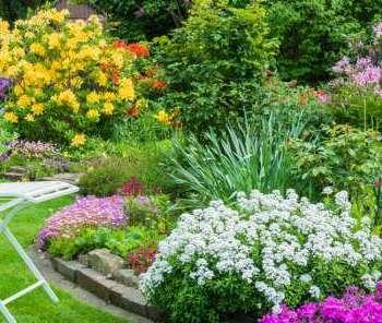 Eviniz için söylenmemiş ama harika bahçe fikirleri