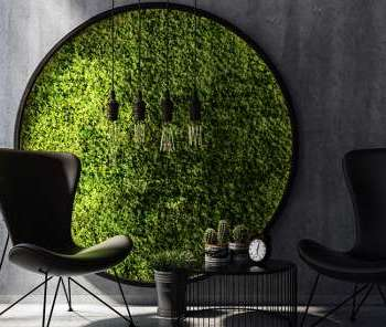 BIOPHILIC DESIGN: How to incorporate to your home interior