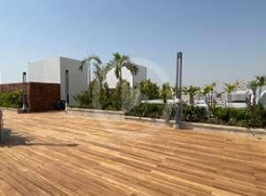 تصميم حديقة الفيلا في منطقة تلال الإمارات في دبي